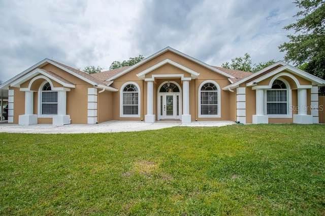 11539 Audubond Lane, Clermont, FL 34711 (MLS #G5040783) :: Visionary Properties Inc