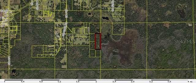 Off Cr 719, Webster, FL 33597 (MLS #G5040793) :: Zarghami Group