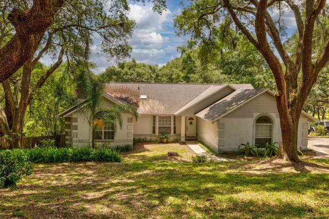 30849 Vista View, Mount Dora, FL 32757 (MLS #G5040864) :: Globalwide Realty
