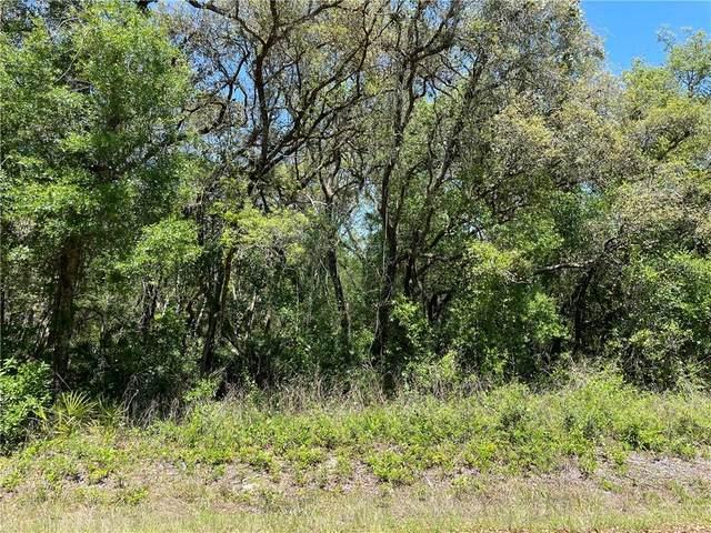 August Avenue, Webster, FL 33597 (MLS #G5040916) :: Armel Real Estate