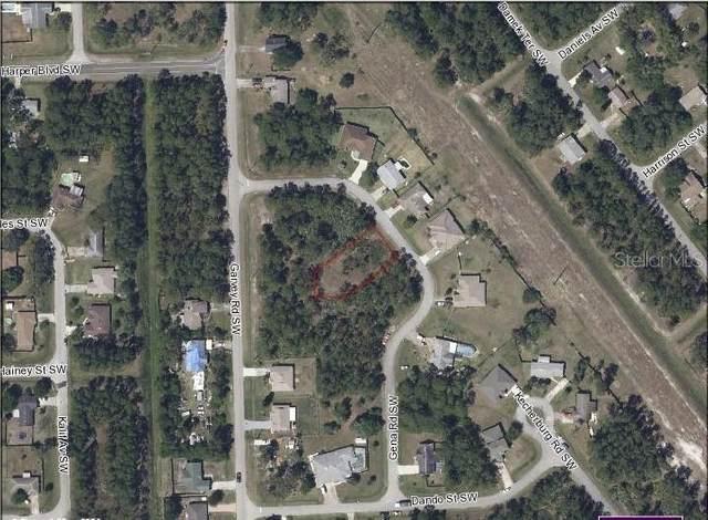 840 Gena Road SW, Palm Bay, FL 32908 (MLS #G5041000) :: Lockhart & Walseth Team, Realtors