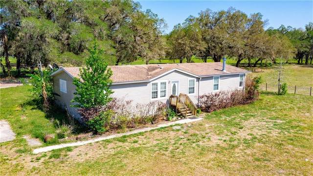 10975 SE 14TH Drive, Webster, FL 33597 (MLS #G5041010) :: Premium Properties Real Estate Services