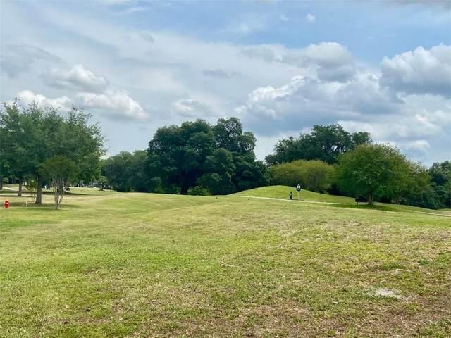 577 Dowling Circle, Lady Lake, FL 32159 (MLS #G5041020) :: Dalton Wade Real Estate Group