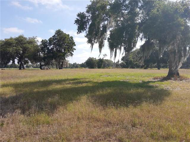 1193 Youth Camp Road, Groveland, FL 34736 (MLS #G5041046) :: SunCoast Home Experts