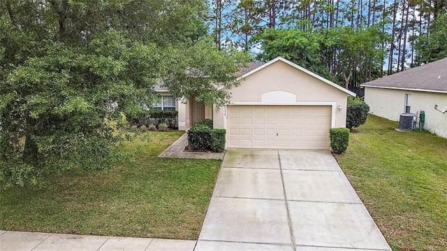 2339 Tealwood Circle, Tavares, FL 32778 (MLS #G5041066) :: Team Pepka
