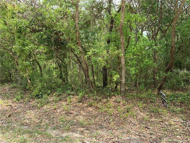 9066 Top Rock Drive, Webster, FL 33597 (MLS #G5041080) :: Bob Paulson with Vylla Home