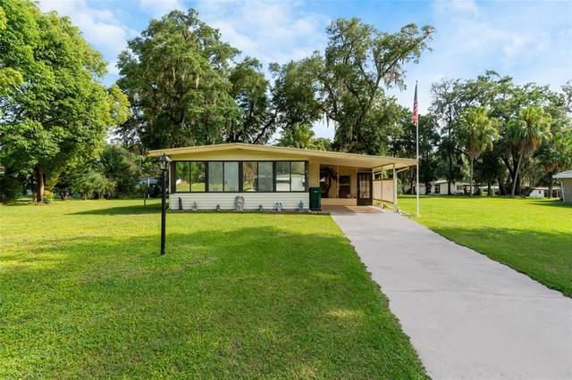 308 Sheerwood Drive, Lady Lake, FL 32159 (MLS #G5041140) :: Vacasa Real Estate