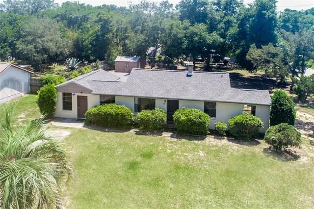 166 W Charlotte Avenue, Eustis, FL 32726 (MLS #G5041166) :: Vacasa Real Estate