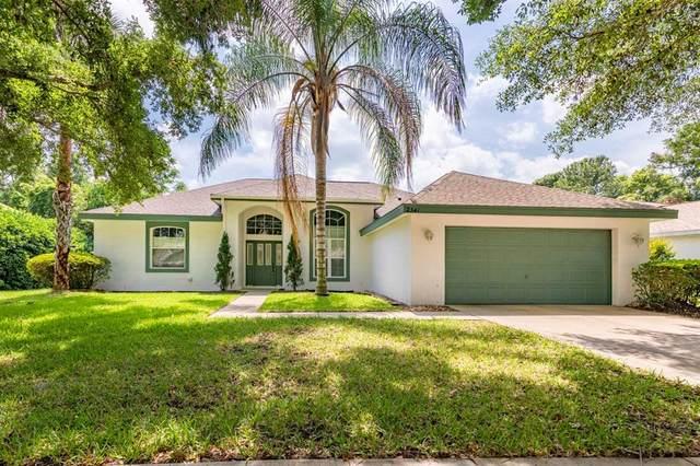 2341 Park Forest Boulevard, Mount Dora, FL 32757 (MLS #G5041286) :: Globalwide Realty