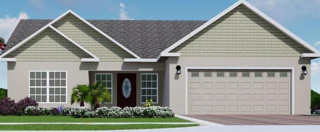 5024 NE 125TH Loop, Oxford, FL 34484 (MLS #G5041293) :: Bustamante Real Estate