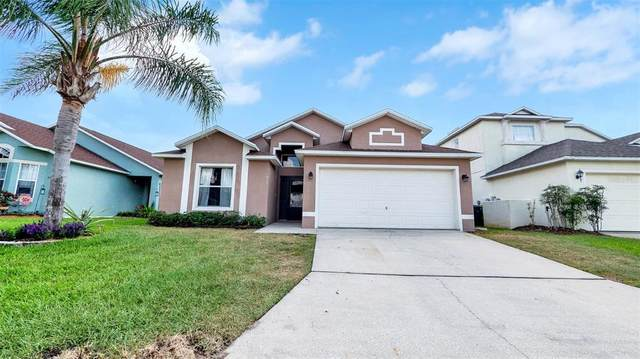 317 Fox Loop, Davenport, FL 33837 (MLS #G5041528) :: Heckler Realty