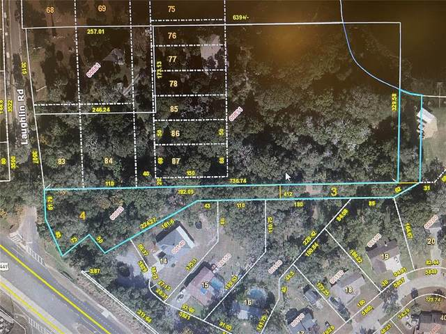 N Orange Blossom Trail, Mount Dora, FL 32757 (MLS #G5041647) :: Globalwide Realty