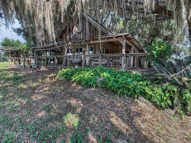 6590 NW 223RD Street, Micanopy, FL 32667 (MLS #G5041655) :: RE/MAX Local Expert