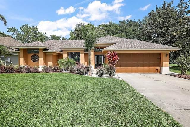 19445 Spring Oak Drive, Eustis, FL 32736 (MLS #G5041667) :: Expert Advisors Group
