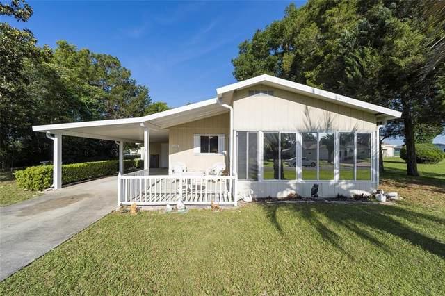 10060 SW 98TH Terrace, Ocala, FL 34481 (MLS #G5041714) :: Globalwide Realty