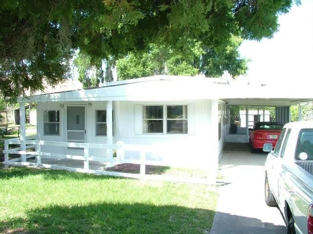 16875 SE 101ST COURT Road, Summerfield, FL 34491 (MLS #G5041768) :: GO Realty