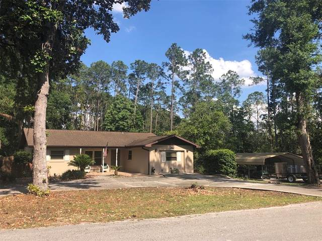 43710 Sunset Drive, Paisley, FL 32767 (MLS #G5041775) :: Lockhart & Walseth Team, Realtors
