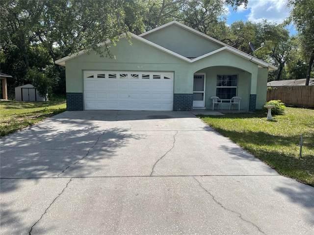 904 Ida Street, Wildwood, FL 34785 (MLS #G5041808) :: Bustamante Real Estate