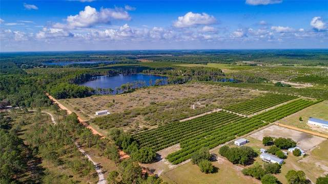 Lake Nellie Road, Clermont, FL 34714 (MLS #G5041818) :: Lockhart & Walseth Team, Realtors