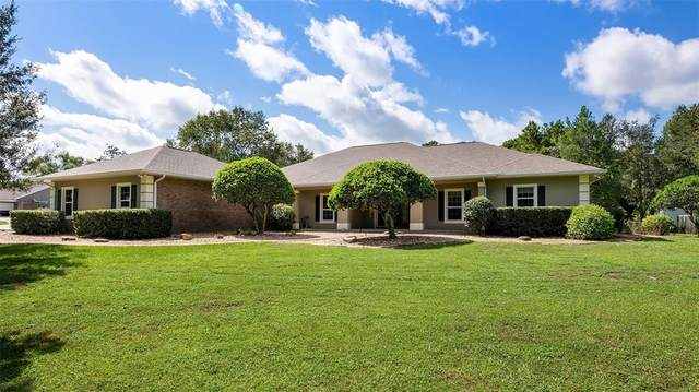 28132 County Road 46A, Sorrento, FL 32776 (MLS #G5041829) :: Premium Properties Real Estate Services
