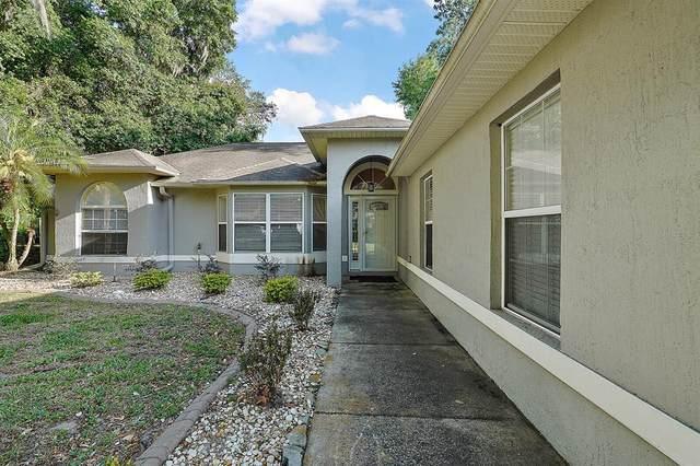 4168 Cactus Lane, Mount Dora, FL 32757 (MLS #G5041883) :: Expert Advisors Group