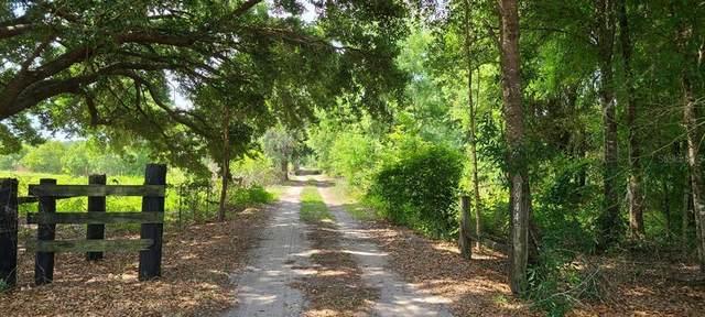 7944 Bay Lake Road, Groveland, FL 34736 (MLS #G5041917) :: The Duncan Duo Team