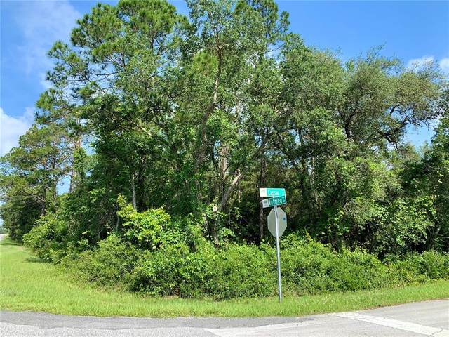 Lot 6 Nutmeg Avenue, Eustis, FL 32736 (MLS #G5042024) :: MVP Realty