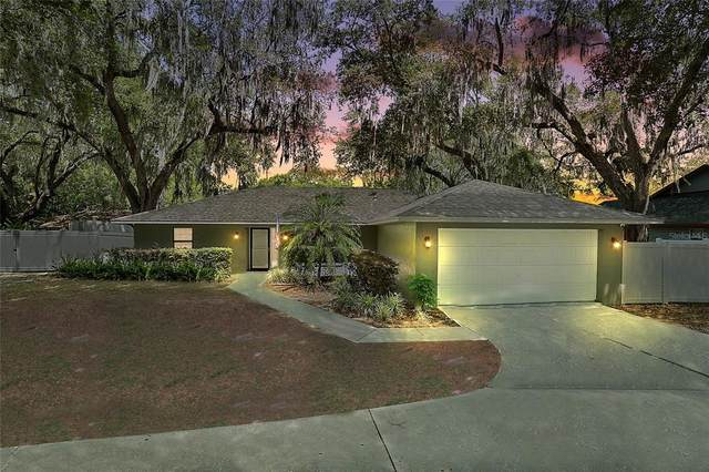 405 W Mirror Lake Drive, Fruitland Park, FL 34731 (MLS #G5042125) :: Realty One Group Skyline / The Rose Team