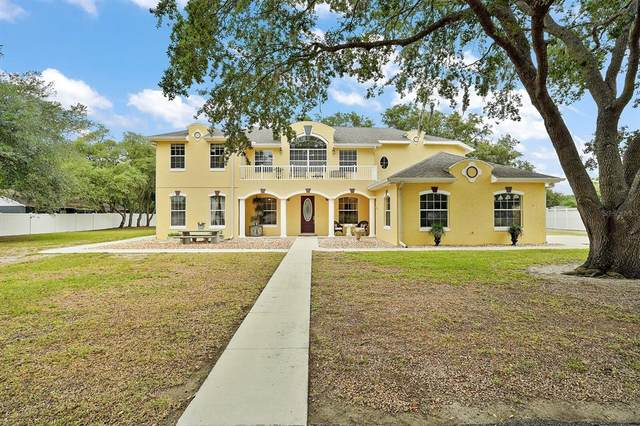 34041 Jaykins Court, Leesburg, FL 34788 (MLS #G5042144) :: The Kardosh Team