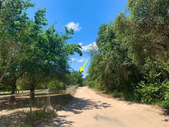 LOT 12500 Summit Avenue, Leesburg, FL 34788 (MLS #G5042344) :: Armel Real Estate