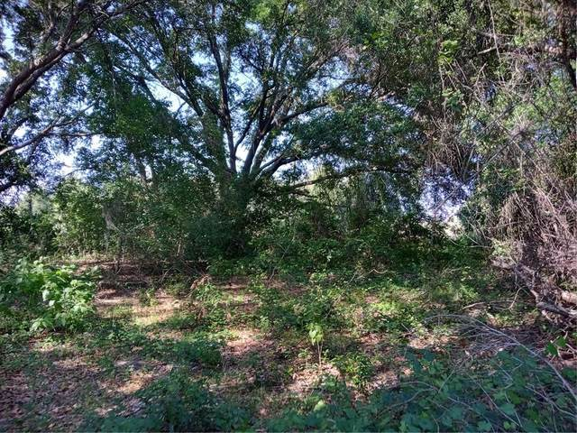 Cherry Lake Road, Groveland, FL 34736 (MLS #G5042367) :: Kelli and Audrey at RE/MAX Tropical Sands