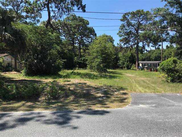 10700 SE 145TH Street, Summerfield, FL 34491 (MLS #G5042504) :: Armel Real Estate