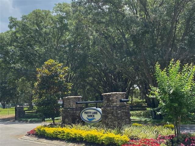 5044 Lakeshore Ranch Road, Groveland, FL 34736 (MLS #G5042700) :: Armel Real Estate