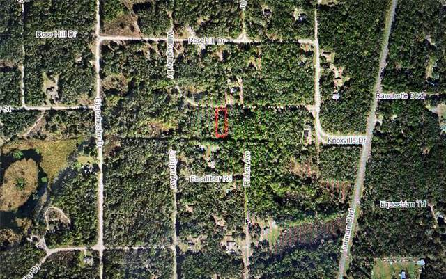 7251 Willoughby Drive, Webster, FL 33597 (MLS #G5042743) :: Your Florida House Team