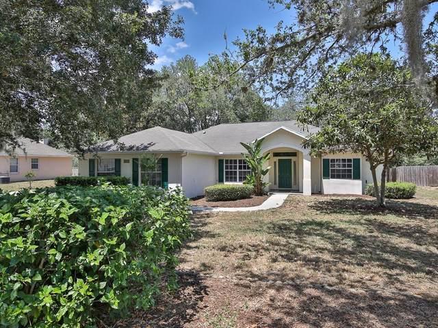 34016 Valencia Drive, Leesburg, FL 34788 (MLS #G5042771) :: Everlane Realty