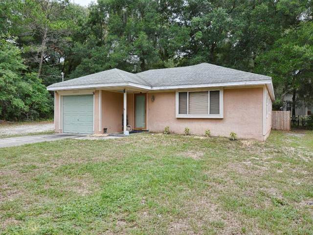 30619 County Road 435, Mount Plymouth, FL 32776 (MLS #G5042795) :: Armel Real Estate