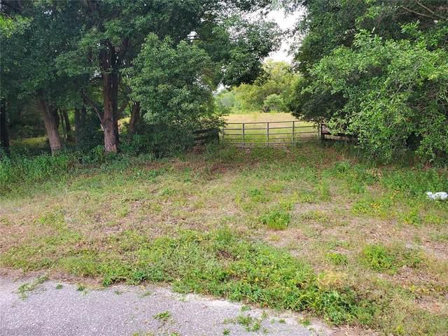Tree Frog Lane, Eustis, FL 32736 (MLS #G5042796) :: Team Pepka
