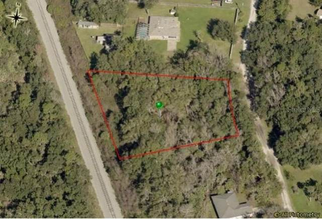 4642 Tree Top Lane, Edgewater, FL 32141 (MLS #G5042916) :: RE/MAX Local Expert