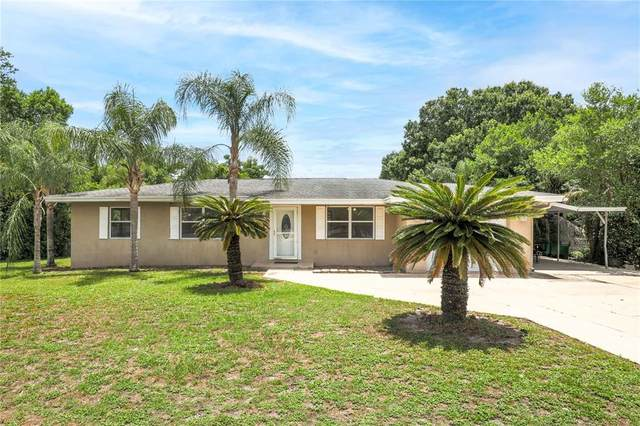 1299 Briarwood Avenue, Deltona, FL 32725 (MLS #G5042944) :: Everlane Realty