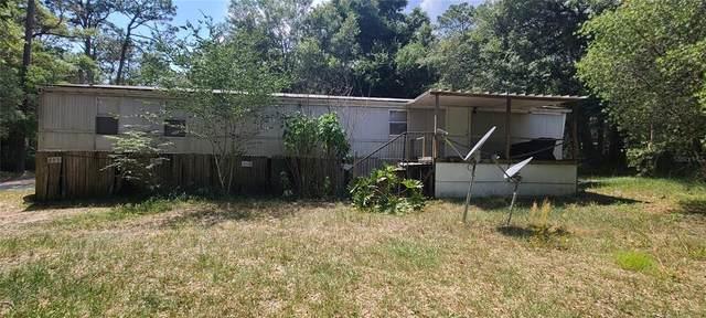 28435 SE 172ND Street, Umatilla, FL 32784 (MLS #G5042961) :: Armel Real Estate