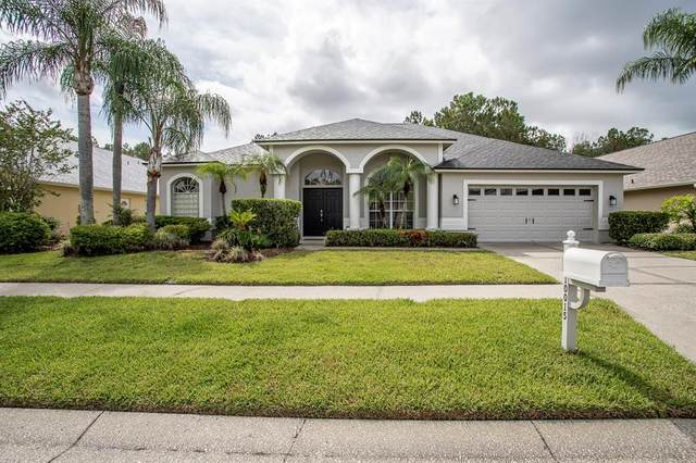 10015 Cypress Shadow Avenue, Tampa, FL 33647 (MLS #G5043045) :: Team Bohannon
