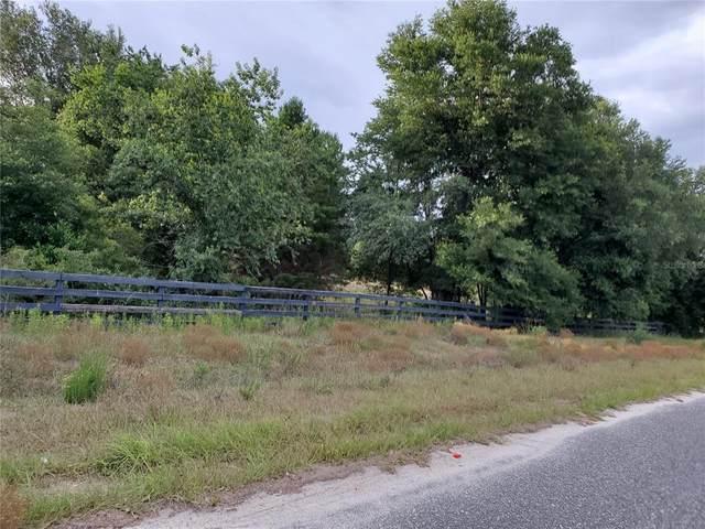 Tree Frog Lane, Eustis, FL 32736 (MLS #G5043047) :: Team Pepka
