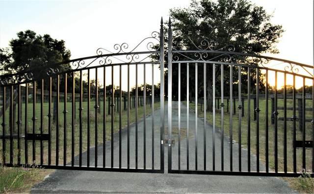 1945 E County Road 462, Wildwood, FL 34785 (MLS #G5043076) :: Prestige Home Realty