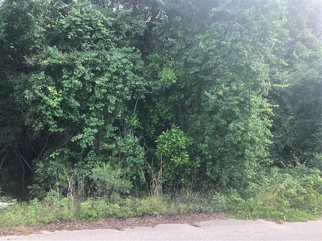 SE 22ND Lane, Silver Springs, FL 34488 (MLS #G5043126) :: RE/MAX LEGACY
