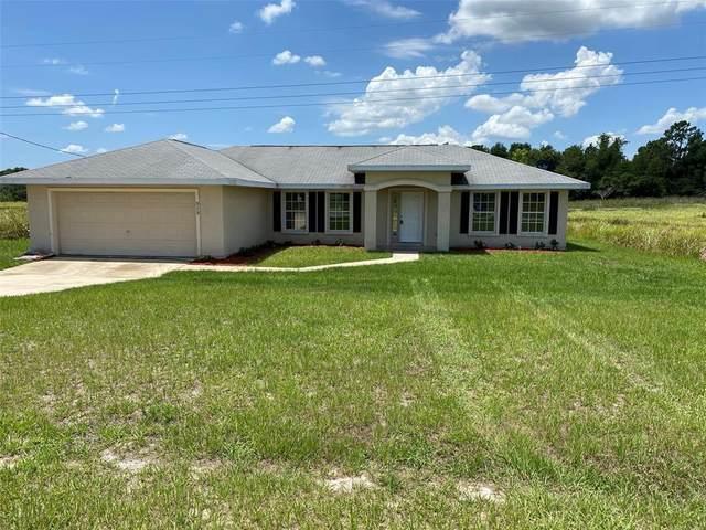 313 Locust Pass, Ocala, FL 34472 (MLS #G5043159) :: Southern Associates Realty LLC