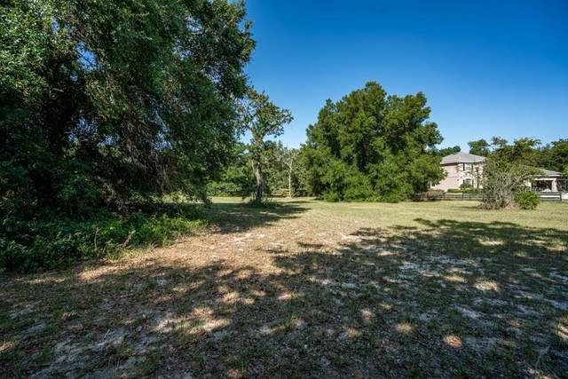 Kylejen Lane, Mount Dora, FL 32757 (MLS #G5043178) :: The Robertson Real Estate Group