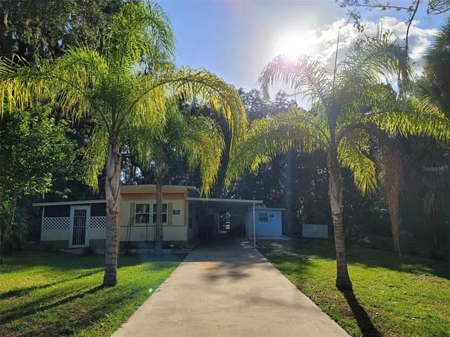 16760 SE 100TH Court, Summerfield, FL 34491 (MLS #G5043200) :: Zarghami Group