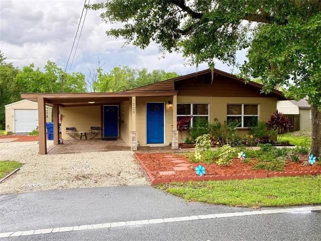 1225 Ester Street, Groveland, FL 34736 (MLS #G5043255) :: Zarghami Group