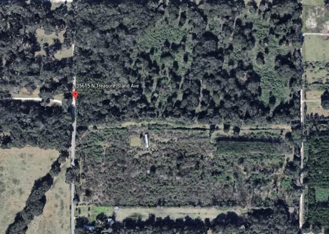 35540 N Treasure Island Avenue, Leesburg, FL 34788 (MLS #G5043299) :: Gate Arty & the Group - Keller Williams Realty Smart