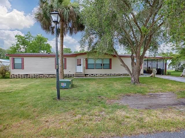 46 Wilderness Drive, Lake Panasoffkee, FL 33538 (MLS #G5043306) :: Globalwide Realty